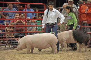 South Florida Fair09