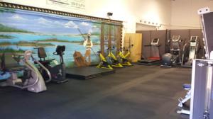 Tampa Gym01