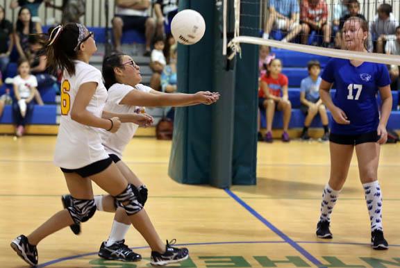 Volleyball03