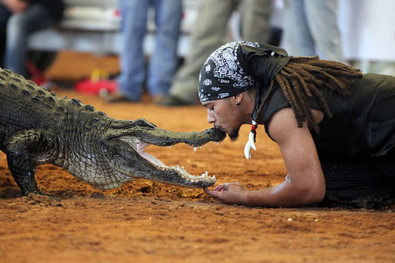Alligator wrestler Pharaoh Gayles kisses the snout of his reptilian opponent during a Freestyle Alligator Wrestling Competition Feb. 13 at Field Day. Gayles is a regular alligator wrestler at the Miccosukee Indian Village in Trail.