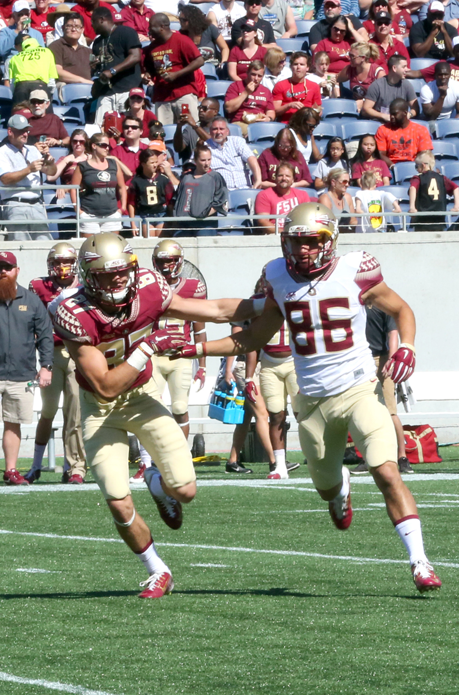 An announced crowd of more than 49,000 watch the Florida State Seminoles, including Justin Motlow (86), in the team's spring game April 9 at the Citrus Bowl in Orlando.