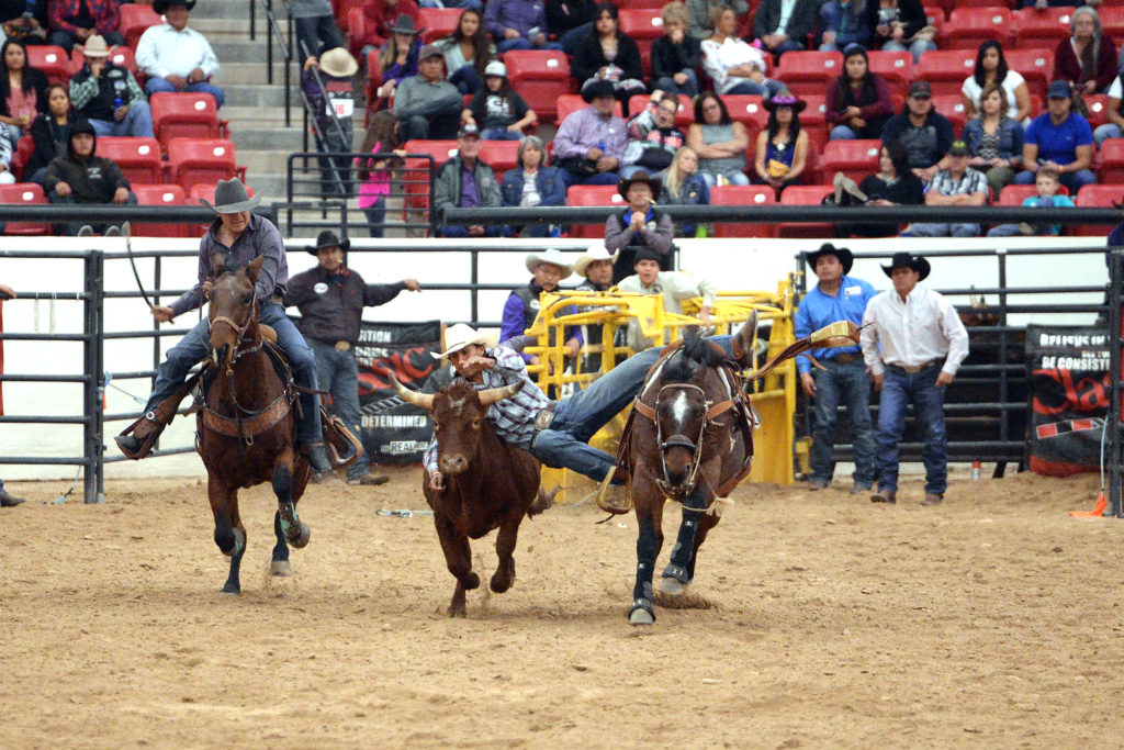 Blevyns Jumper competes in steer wrestling at INFR in Las Vegas. (Smith Rodeo Photography)