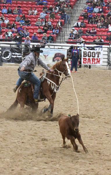 Connor Osborn Calf Roping 3rd Round Friday