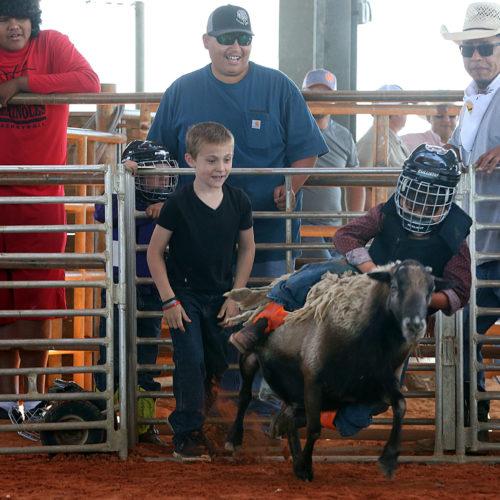 kids rodeo 3