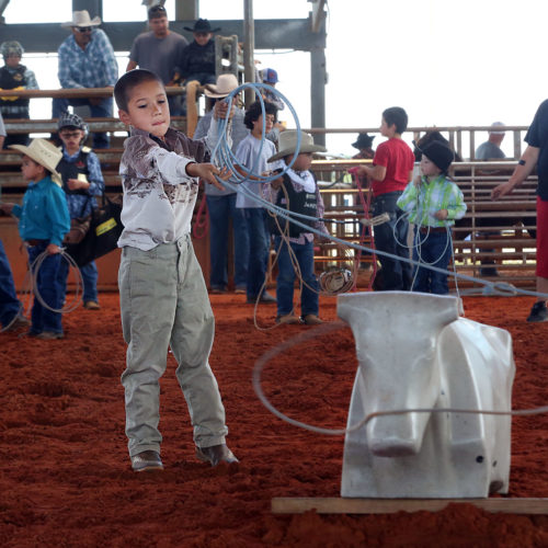 kids rodeo 8