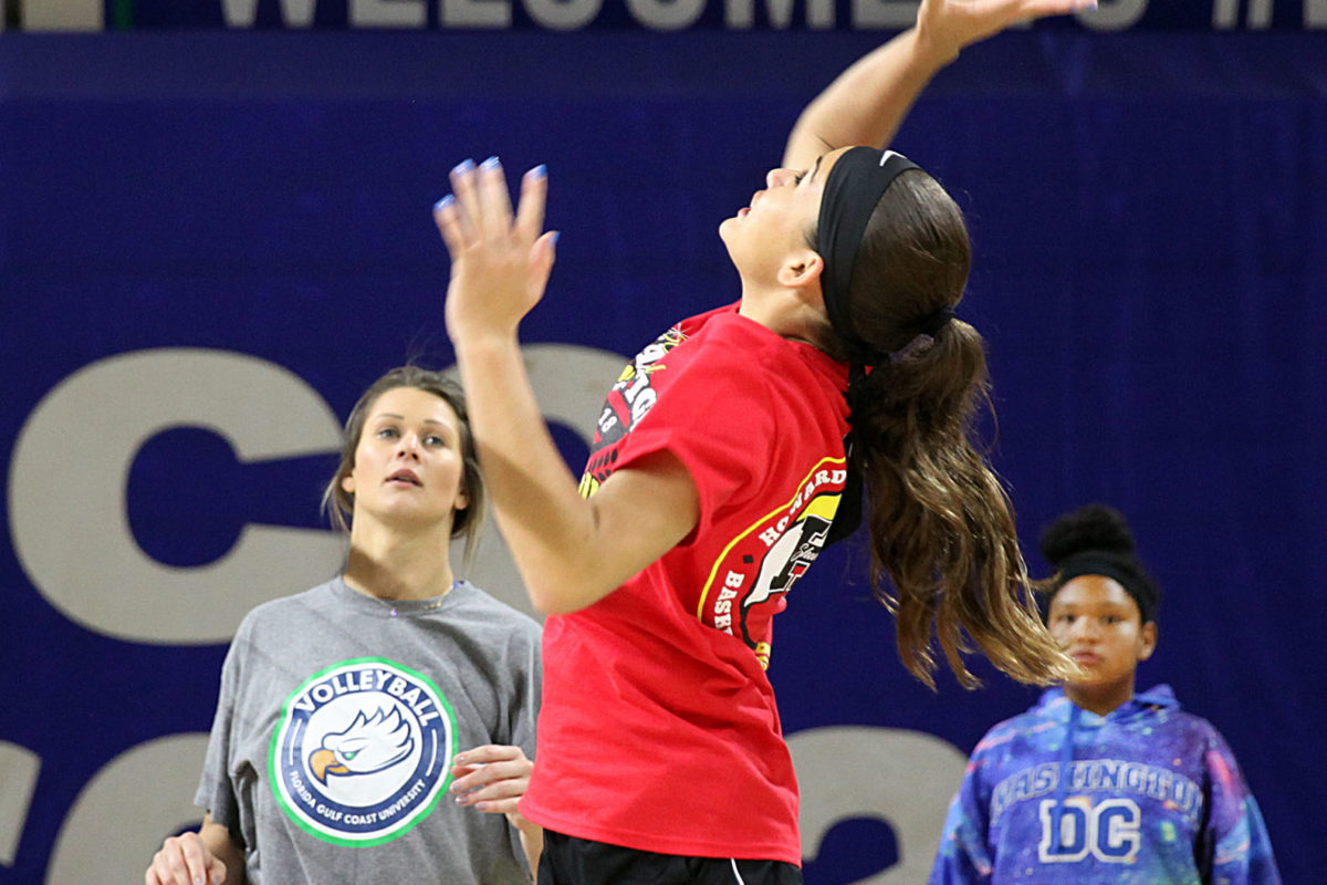 Carlise Bermudez gets ready to spike the ball over the net during a drill at the FGCU volleyball clinic. (Beverly Bidney photo)